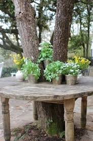 tree bench i really want to build this my tree for the