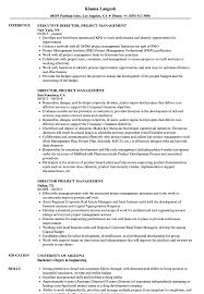 resume summary of qualifications for cmaa director project management resume sles velvet jobs