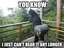 I Should Buy A Boat Meme Generator - just contemplating the bear necessities of life misc quickmeme