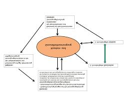 Analyse der Arzneimitteltherapie von Rheumapatienten im