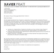 sample it manager cover letter