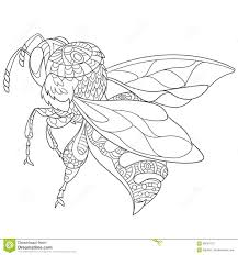 zentangle stylized bee insect stock vector image 68637912