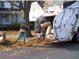 Waste Management Christmas Tree Pickup by Sanitation Bay City Mi