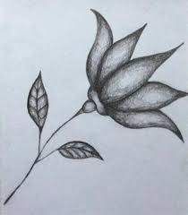 just a quick sketch i did of a flower by melissa2217