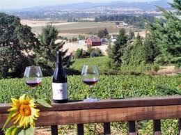 Virginia Bed And Breakfast Winery 54 Best Inns On Vineyards Images On Pinterest Vineyard
