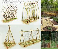 How To Make Trellis For Peas 27 Best Garden Trellises U0026 Obelisks Images On Pinterest Garden
