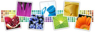 color and paint spray paint colors spray paint color center krylon