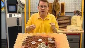 c est pas sorcier cuisine c est pas sorcier le déclin des abeilles abeilledupoitou fr