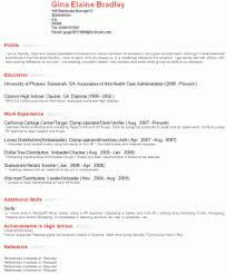 profile resume exles what to write in profile in resume musiccityspiritsandcocktail