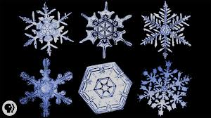 snowflake bentley museum the science of snowflakes youtube