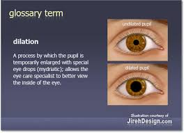 pupil dilation by rockport family eye care rockland camden