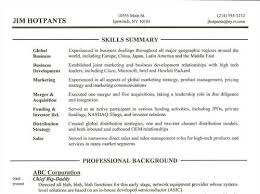 resume summary section examples resume summary section example