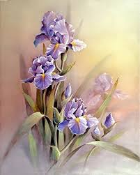 iris flowers violet iris flowers with faded background print of