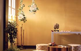 Texture Paint Designs Wall Texture Paint Designs In Asian Paints 4 000 Wall Paint Ideas