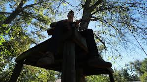 boy plays guitar on a tree platform motion