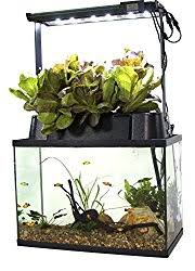 best aquaponic systems reviews