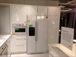 Kitchen Cabinets Tall Kitchen Room Ikea Pantry Cabinet Tall Ikea Built In Fridge Ikea