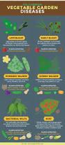 6582 best green fingers at work images on pinterest gardening