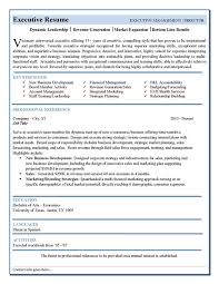 Mis Executive Sample Resume Executive Resume Templates Sales Template For Resume Free 40 Top