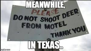 Meanwhile In Texas Meme - image tagged in texas imgflip