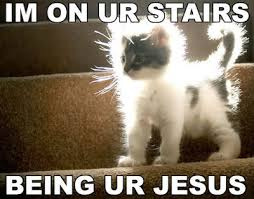 Jesus Cat Meme - sky god jesus cat is just as reasonable as jesus christ or