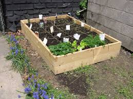how to build a raised vegetable garden bed australia home