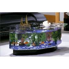 Aquarium Coffee Table Aqua Coffee Table 28 Gallon Aquarium Walmart