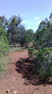 Az Rock Depot Landscape Rock At Rock Bottom Prices Arizona 2 Acres In Quiet Subdivision Near Prescott Nat Forest Rock