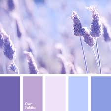 shades of color purple cold shades color palette ideas