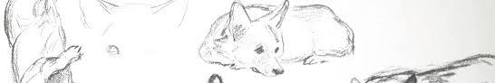 plush corgi dogs in 4 styles cricket tasha tudor and family