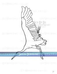 kingfishers coloring pages colorazione martin pescatore