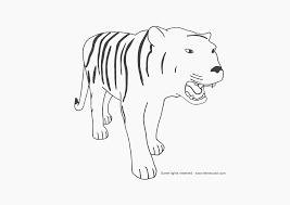 face lisa frank tiger coloring pages 2806 lisa frank tiger