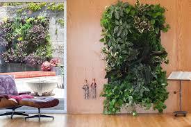 lovely indoor wall garden modest decoration cool diy green living