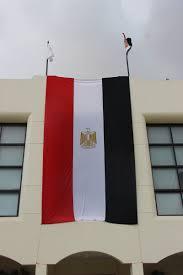 Cairo Flag Tahya Masr Campaign The International Of Choueifat Cairo