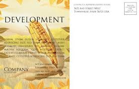 free corn thanksgiving postcard template in microsoft word adobe