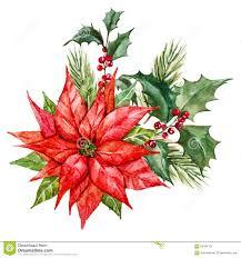 christmas flowers watercolor christmas flowers stock vector image 56784197