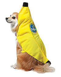 Spirit Halloween Pet Costumes Ups Pal Dog Pet Costume Spirithalloween