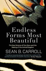 si e v o pour b amazon fr endless forms most beautiful the science of evo