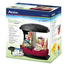 Aqueon Led Light Aqueon Bettabow Led Desktop Fish Aquarium Kit Petco