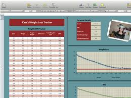 numbers tutorial how to make your own weight loss tracker