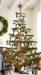 plain decoration silvertip fir tree silver tip