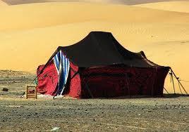 camel tents berber nomad tents safari c morocco desert c
