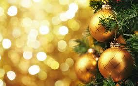 new year christmas tree rainforest islands ferry
