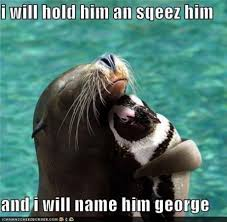 D Aww Meme - d aww i will hold him an sqeez him and i will name him george