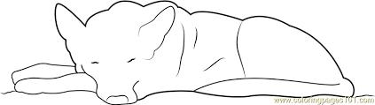 german shepherd coloring pages free german shepherd sleeping coloring page free dog coloring pages