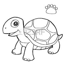turtle coloring images u0026 stock pictures royalty free turtle