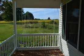 clear roll up porch protection curtains
