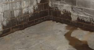wet crawlspace repair matthews wall anchor u0026 waterproofing services