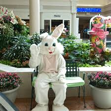 visit the easter bunny this year at abt the bolt