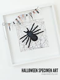 halloween spider specimen art tauni co